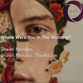 Shawn Mendes - Where Were You In The Morning? ноты для фортепиано