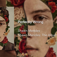 Shawn Mendes - Perfectly Wrong ноты для фортепиано